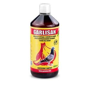 Garlisan